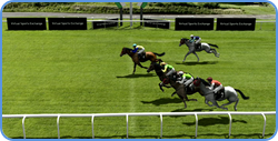 Betdaq virtual horse racing - finnish of the race