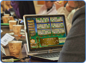 Playing Bingo game online picture